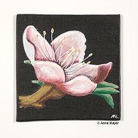 Kirschblüte Acryl auf Leinwand 10 x 10 cm