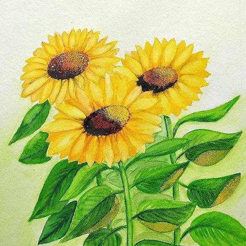 Sonnenblumen Flash Pigmente