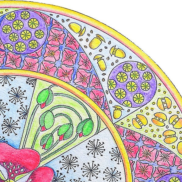 Mandala Mohn Detail