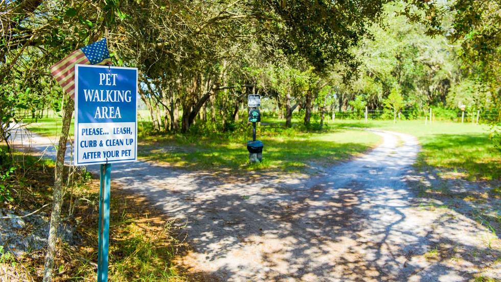southport springs pet walking area.jpg