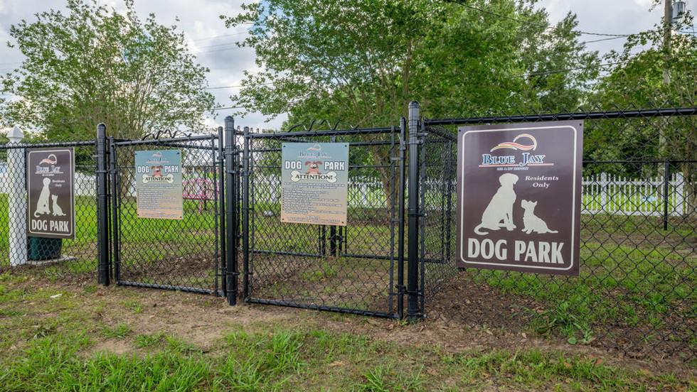 blue_jay_mh_village_dog_park_fenced-1024