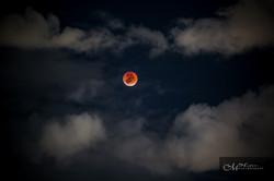 FULL the blood moon 2015MHOFER-8957-3.jpg