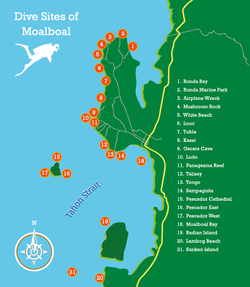 Pescadores Seaview Suites Moalboal45