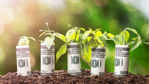 EU goes green: the EU Green Deal and current considerations to issue green bonds