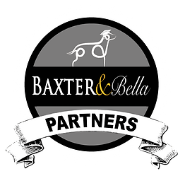 B&B PARTNERS Logo for dark backgrounds.p