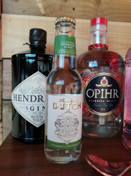 Premium Gin and Tonic selection