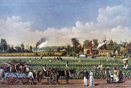 esclaves-plantation-usa.jpg