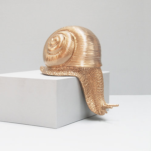 Shelf Snail Gold