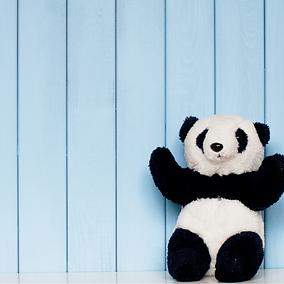 panda enfant