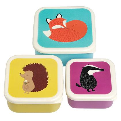 Trio de boites à collations animaux de la forêt