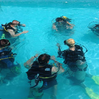 Confined water - Open Water Diver Course