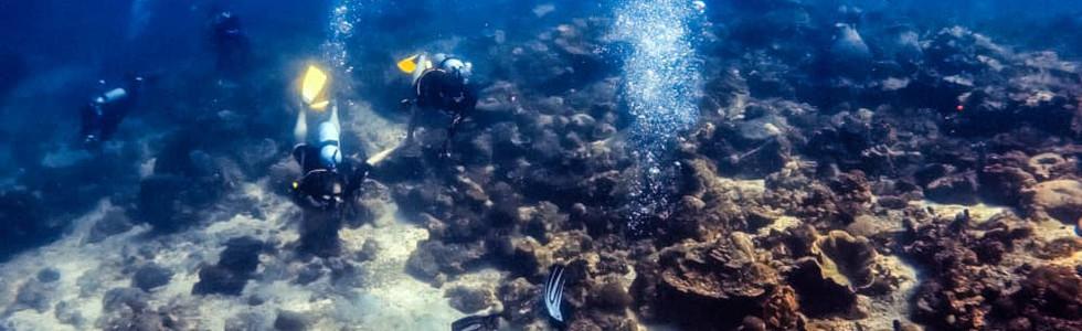 Scuba Club Langkawi dive group