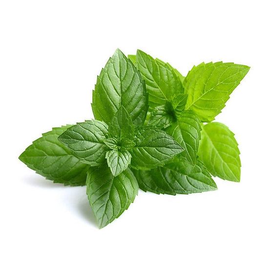 Peppermint (Single) Essential Oil