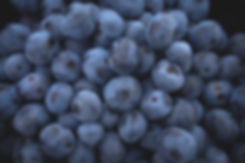 berry%2520lot_edited_edited.jpg