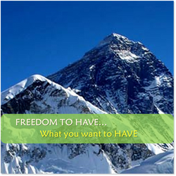 FREEDOM TO HAVE