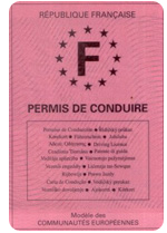 photo permis de conduire