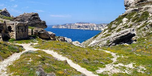 Corse 8572