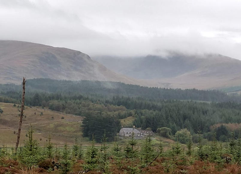 Galloway Forest