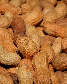 brown-close-up-food-39291.jpg