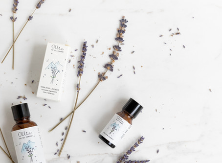 The Essential Facts of Ollie's Himalayan Lavender Oil