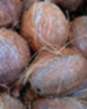coconut-1583223_640.jpg