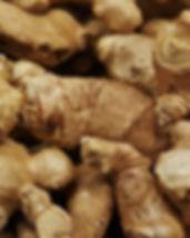 ginger-1388002_640.jpg
