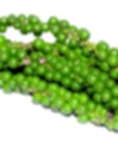 antioxidant-1552316_640.jpg