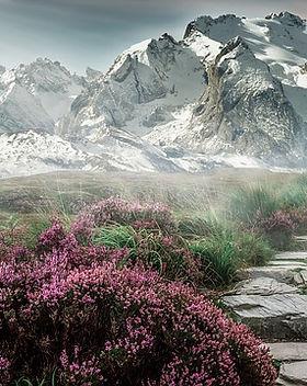 mountain-landscape-2031539_640.jpg