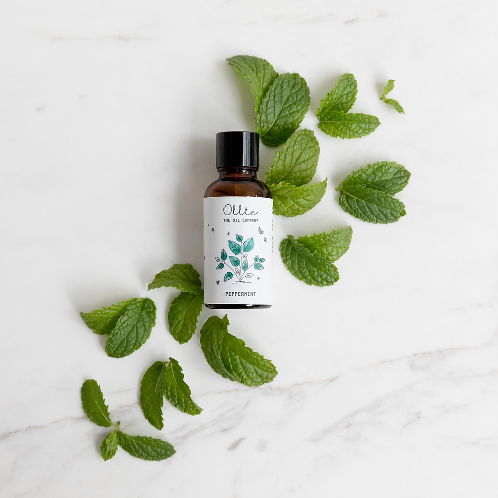 Peppermint essential oil on mint leaves