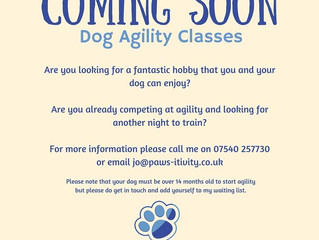 Coming Soon - Agility Classes