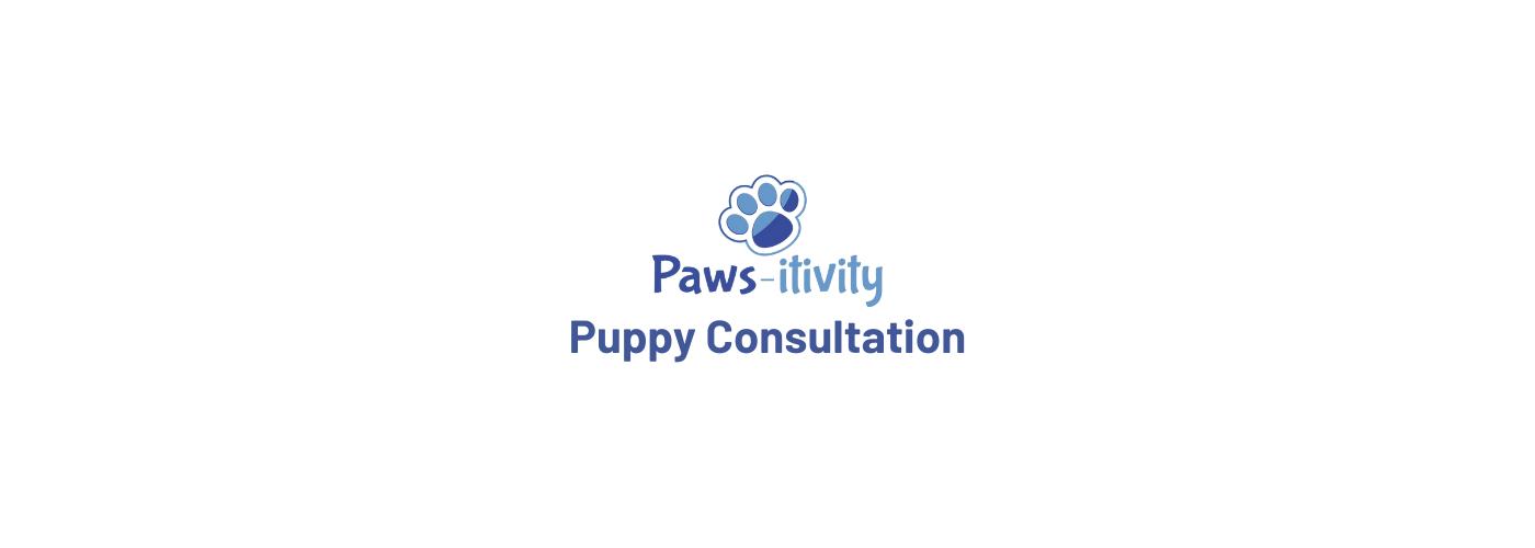 121 Puppy Consultation