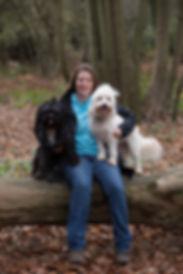 paws-itivity, dog walking, dog training, pet sitting , horsham, sussex, agility, puppy training, puppy sitting, puppy help