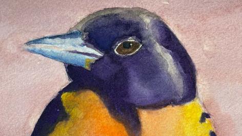 Bird with Grapefruit - Detail