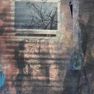 Polaroid Exposure #26