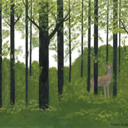 A Walk in the Woods by Martha (Marti) Dobkins (SOLD)