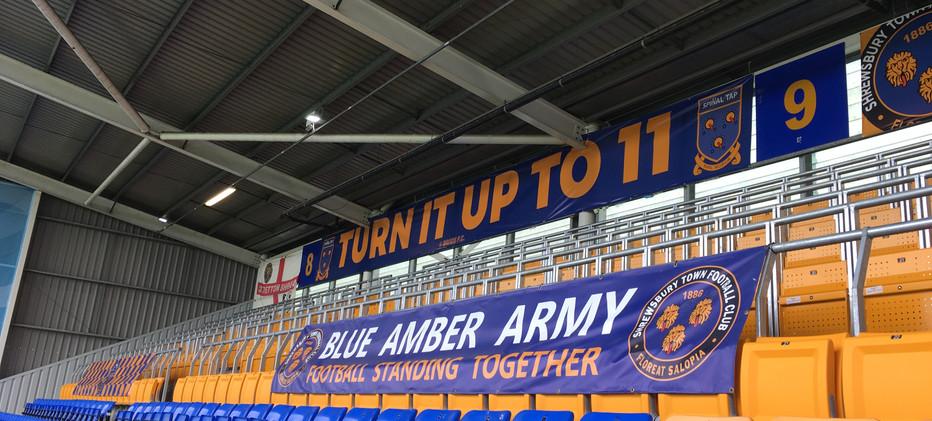 Blue Amber Army