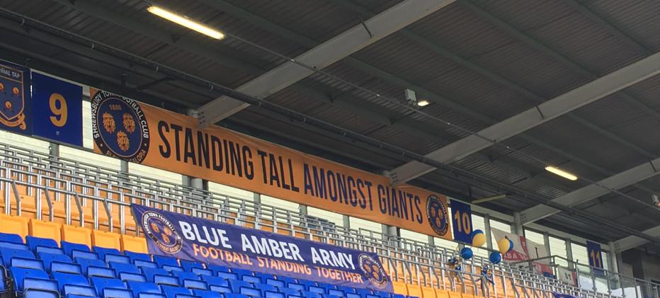 Standing Tall Amongst Giants