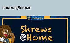 Shrews@Home.JPG