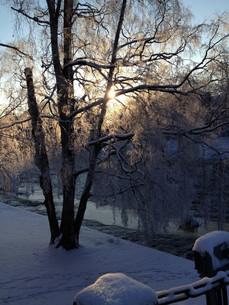 Winter morning in Sweden