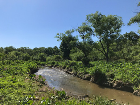 NVCT Expands Heronry