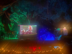 THE FOREST SCREEN