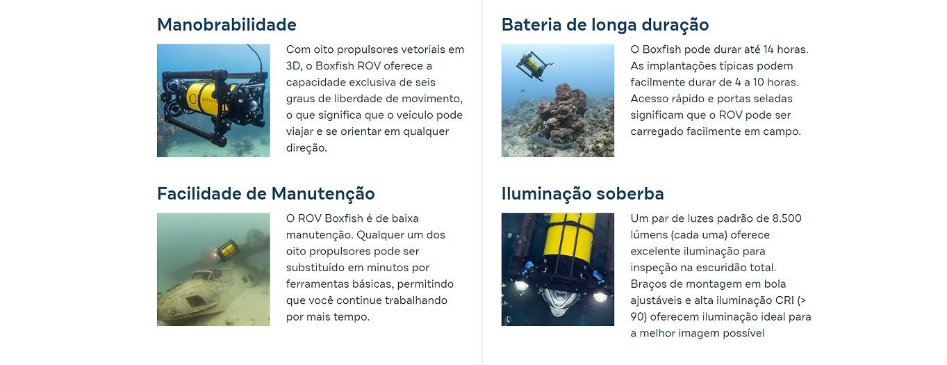 texto boxfish 1.PNG