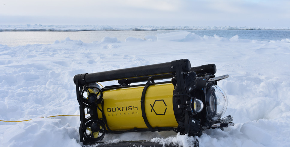 Boxfish ROV in Antarctica.JPG