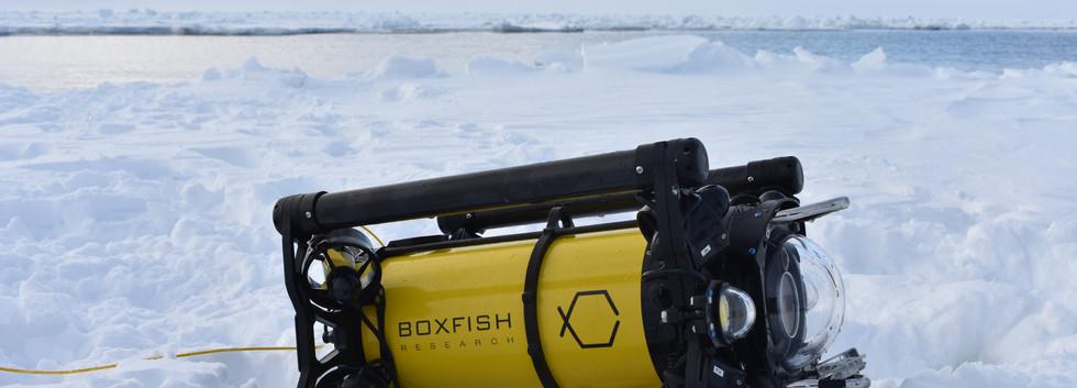 Boxfish ROV in Antarctica.JPG