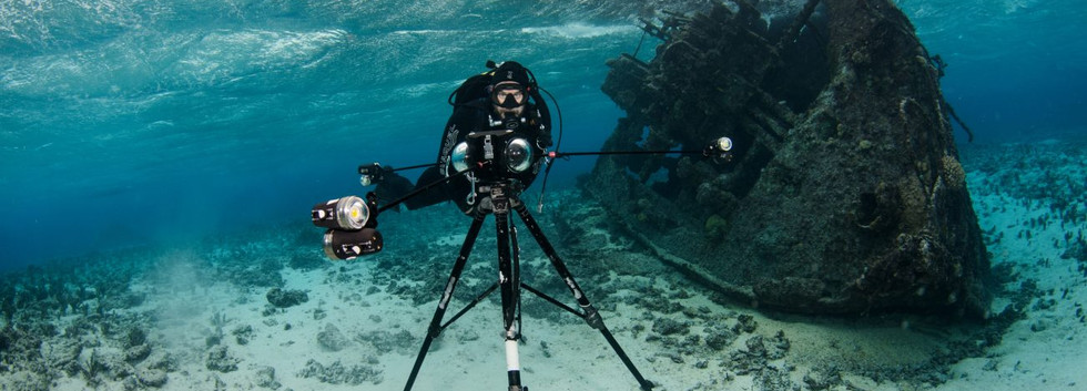 NZ-VR-diver-Boxfish-360-tripod.jpg