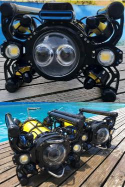 ROV Boxfish