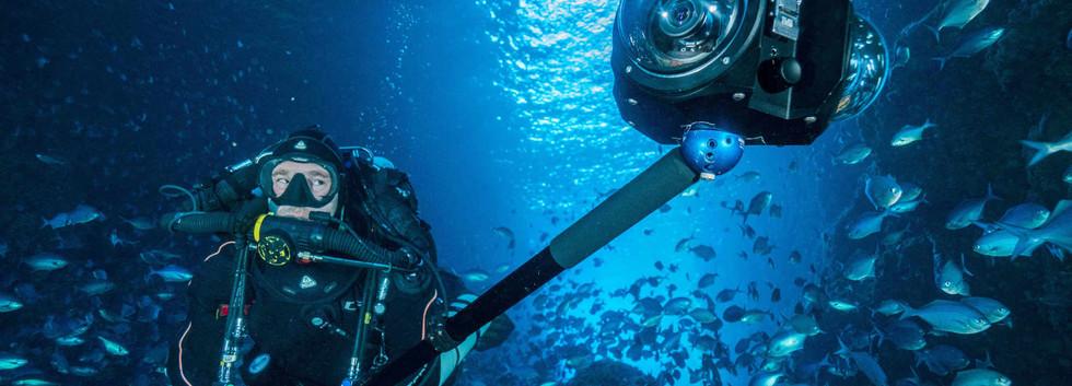 2019_underwater_360_diver_fish.jpg