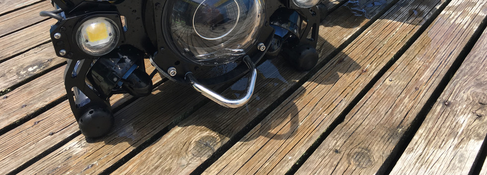 Boxfish ROV FAT.JPG