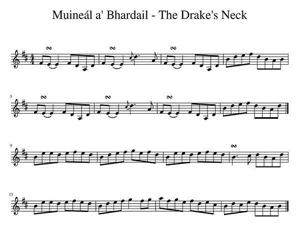 Muineál_a'_Bhardail_-_The_Drake's_Neck.