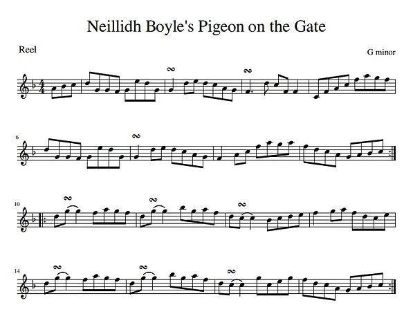Neillidh Boyle's Pigeon on the Gate.JPG